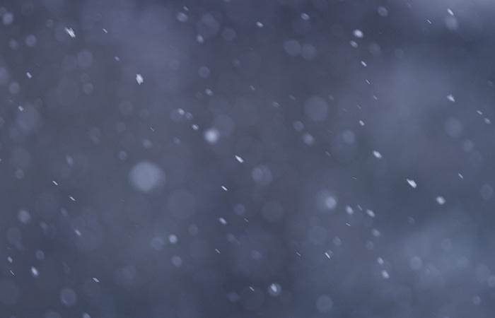 ProRes – Snow 5