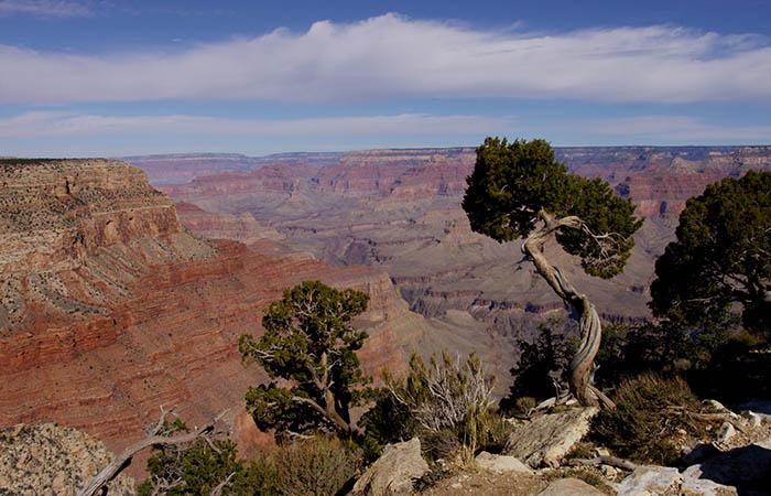 Canyon 11