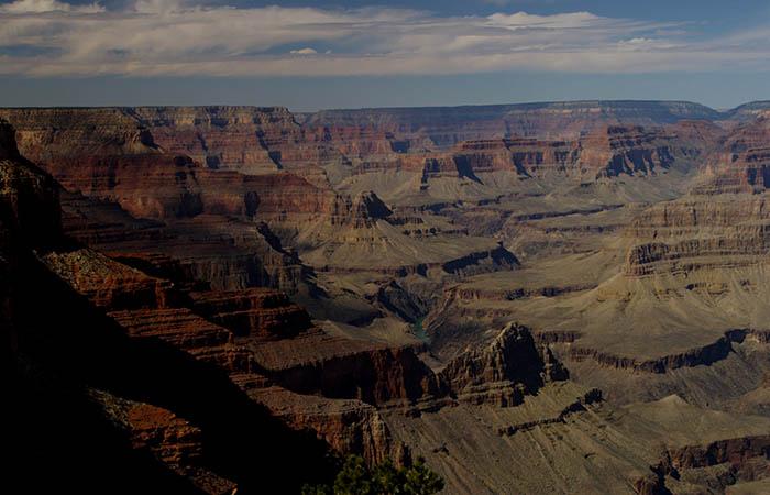 Canyon 19