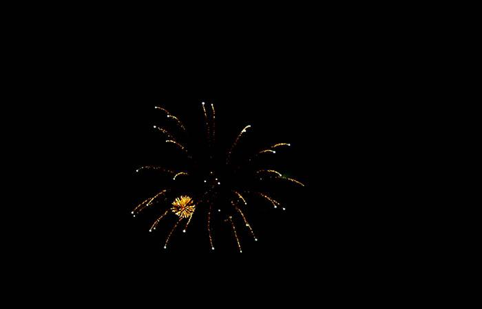 Fireworks 81
