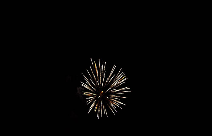 Fireworks 94