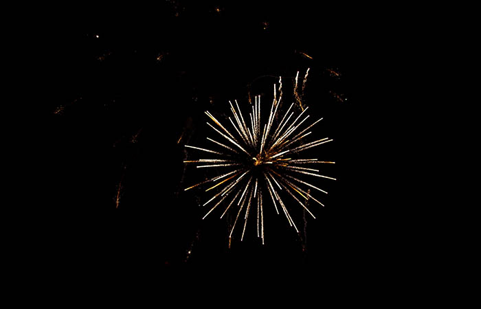Fireworks 95