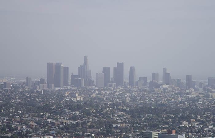 Los Angeles 02