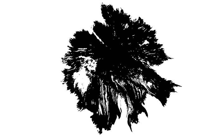 ProRes – Ink Bleed 14