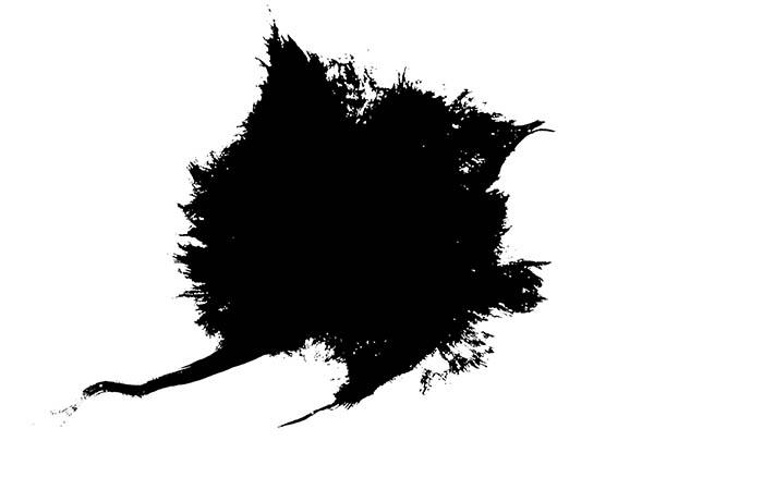 ProRes – Ink Bleed 15