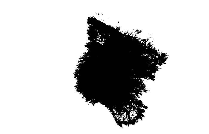 ProRes – Ink Bleed 6